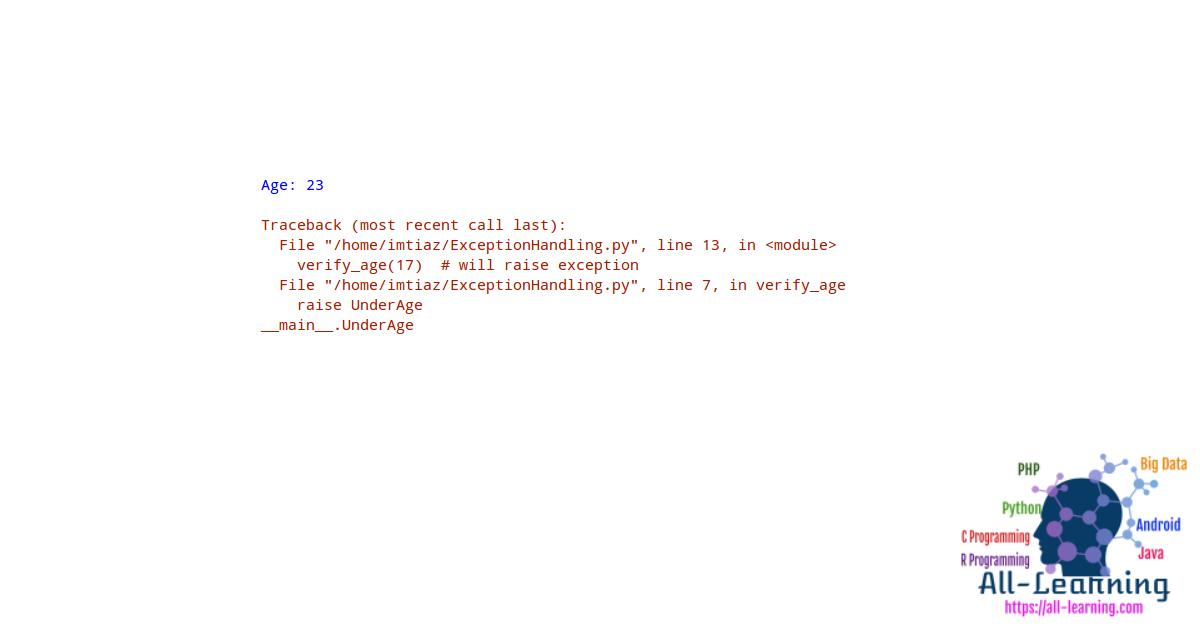 Python Custom Exception