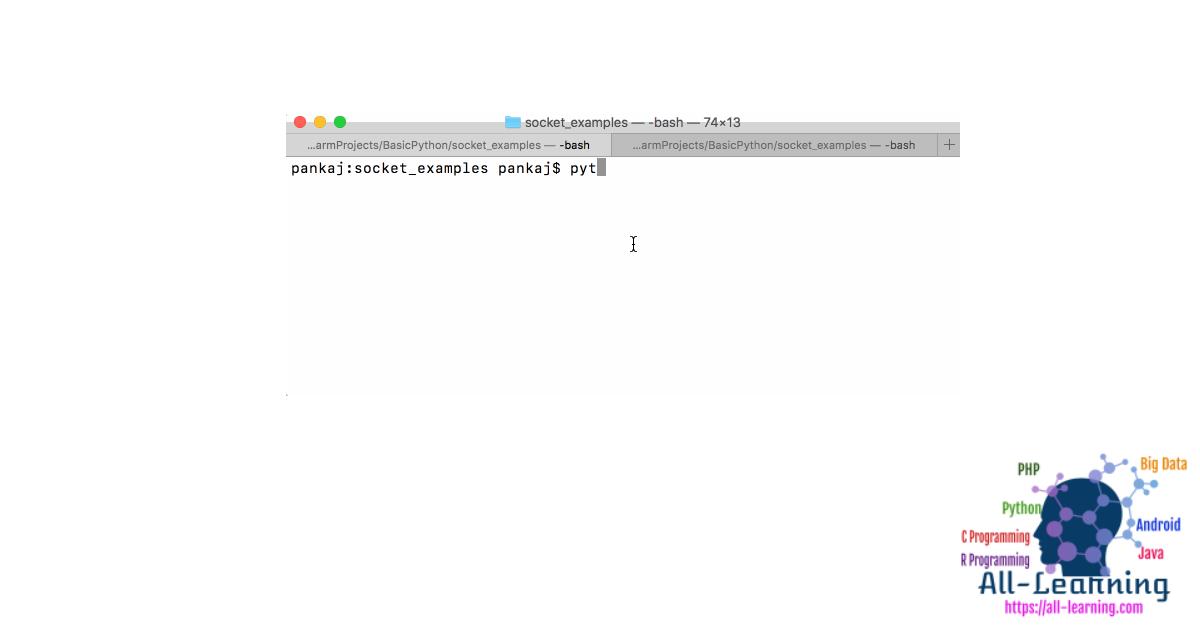 Python Socket Programming - Server, Client Example