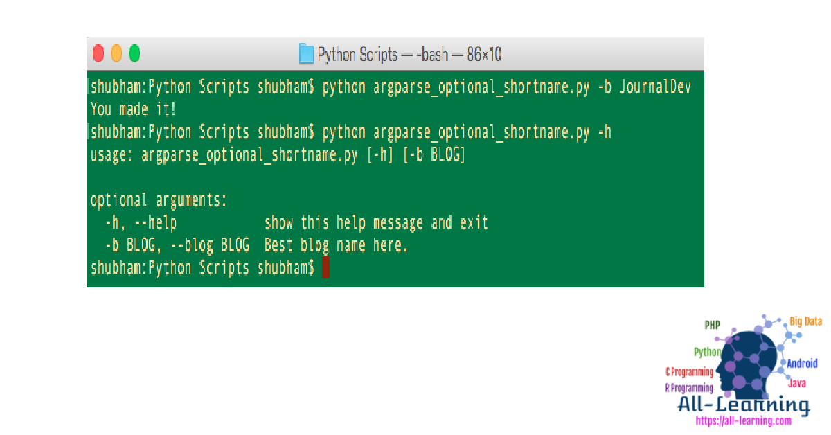 python-argparse-optional-arguments