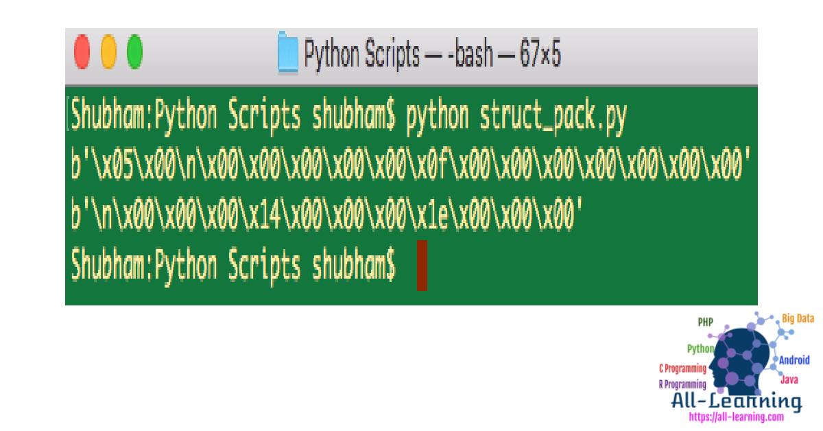 python-struct-pack (1)
